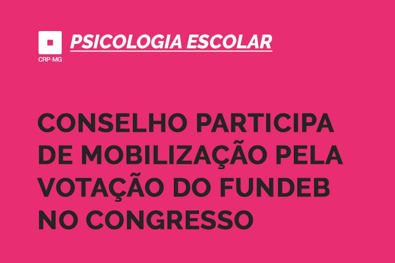 conselho participa de mobilização pela votação do fundeb no congresso